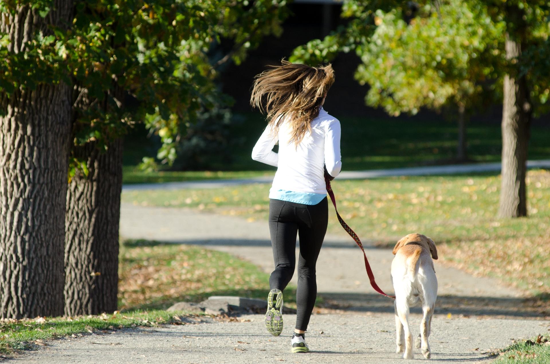 ジョギング特集② ジョギングの効果について